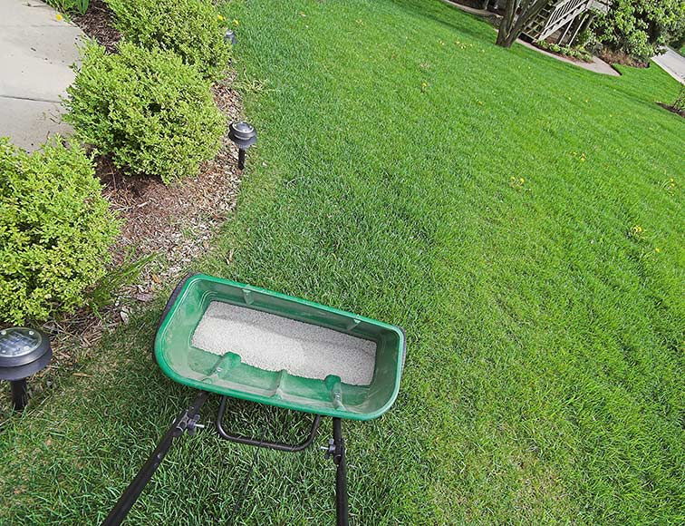 All American Landscaping Spring Lawn Care Services Yates County